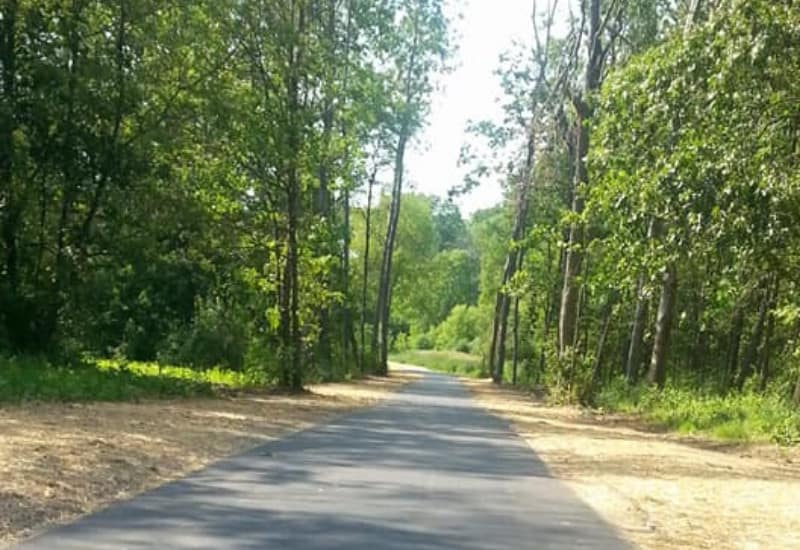 Falling Waters Trail - one of the best things to do in Jackson Michigan