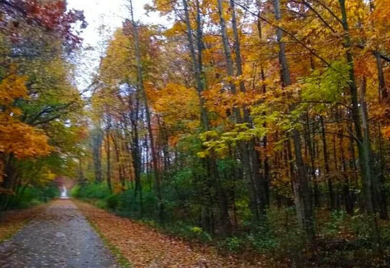 Falling Waters Trail in Jackson Michigan